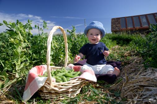 Как развивать ребенка? Раннее детство (1-3): ведущая деятельность