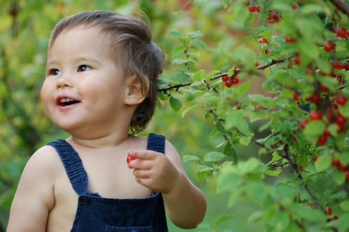 Как развивать ребенка? Раннее детство (1-3): восприятие
